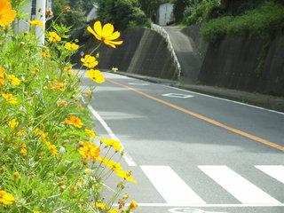 2005_0911_105016AA_s