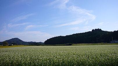 2006_0924_160740aa_s
