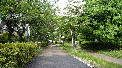 2007_0603_084836aa_s
