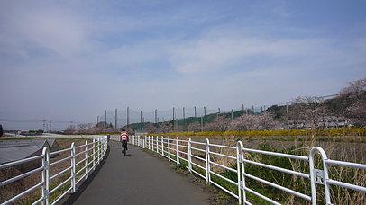 2008_0329_114503aa_s