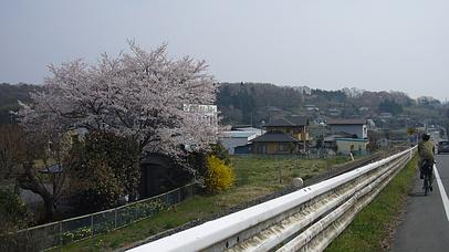 2009_0412_094310aa_s