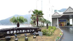 2010_0112_081000aa_s