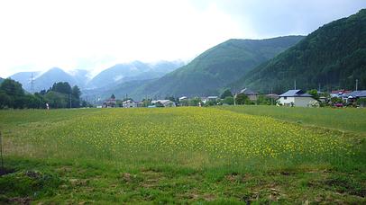 2010_0605_160651aa_s