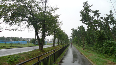 2010_0919_153802aa_s