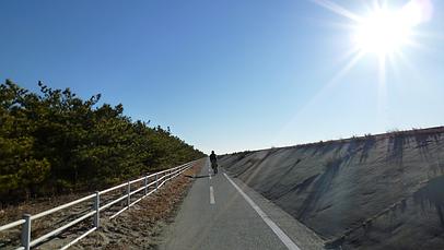 2011_0110_085834aa_s