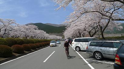 2011_0417_124302aa_s