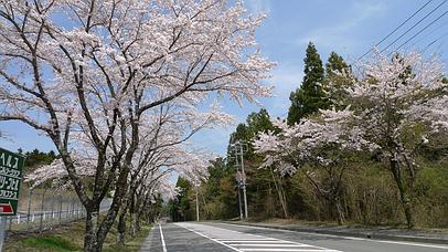 2011_0417_130422aa_s
