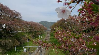 2011_0417_141852aa_s