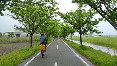 2011_0430_165948aa_s